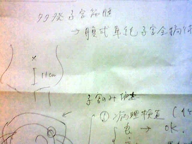 20121220説明書き.JPG