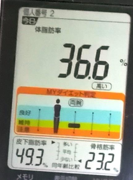 20190315体重たち (4).jpg