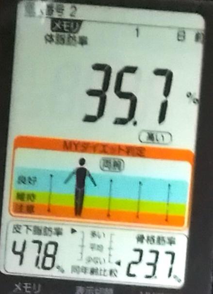 20190410体重たち (3).jpg