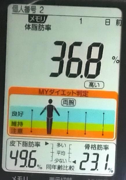 20190411体重たち (3).jpg