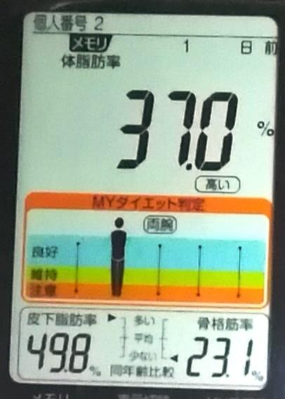 20190413体重たち (3).jpg