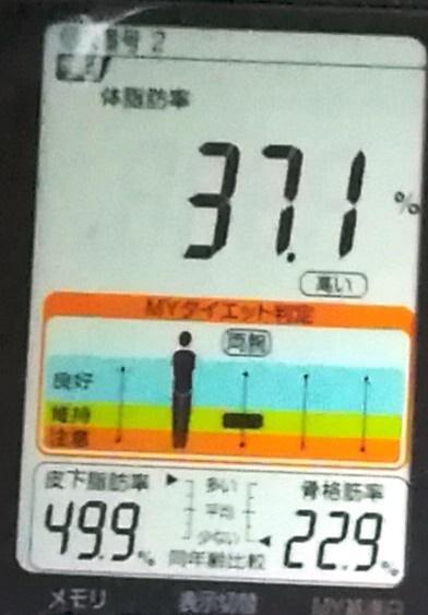 20190414体重たち (3).jpg