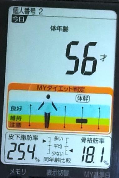 20190426体重たち (4).jpg
