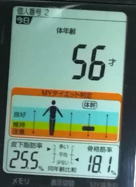 20190503体重たち (4).jpg