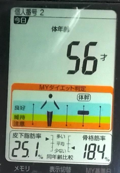 20190507体重たち (4).jpg