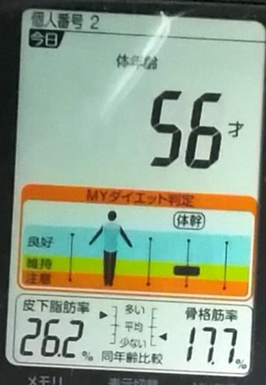 20190511体重たち (4).jpg