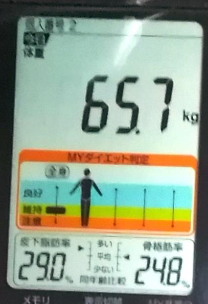 20190526体重たち (2).jpg