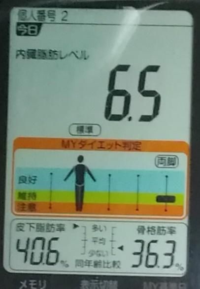 20190528体重たち (1).jpg