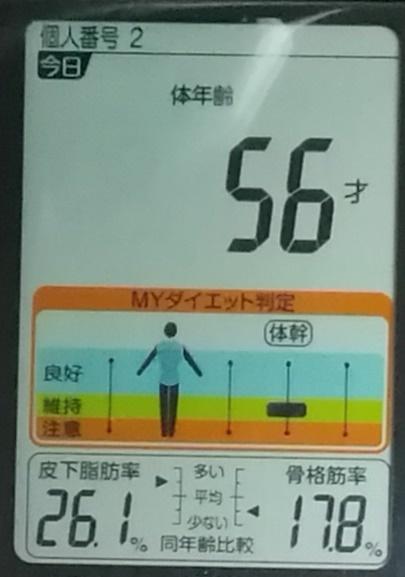 20190528体重たち (4).jpg
