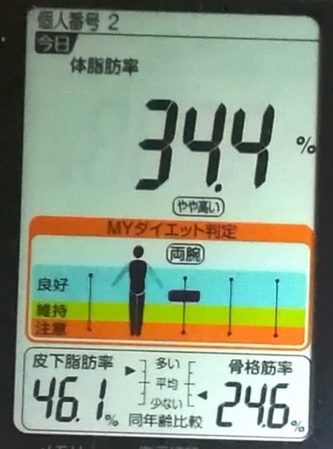 20190601体重たち (3).jpg