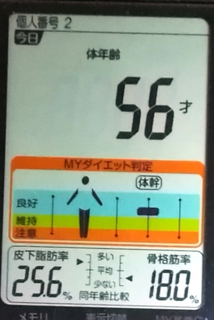 20190601体重たち (4).jpg