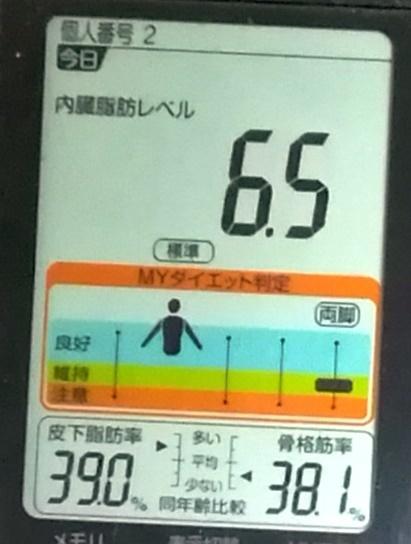 20190604体重たち (1).jpg