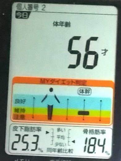 20190604体重たち (4).jpg