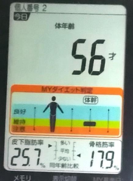 20190624体重たち (4).jpg