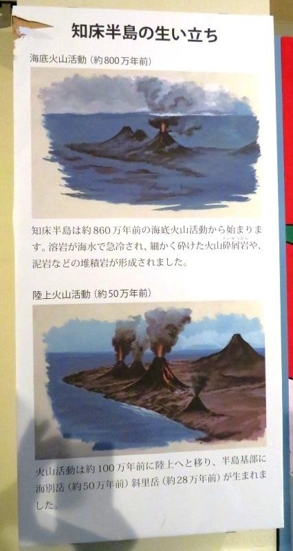 20190730知床博物館2.JPG