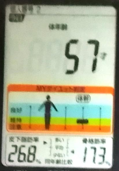 20191013体重たち (4).jpg
