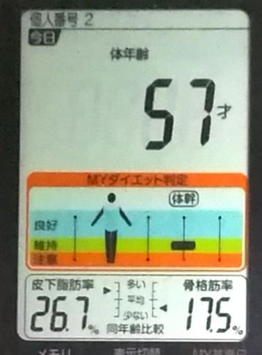 20191102体重たち (4).jpg