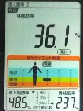 20191109体重たち (3).jpg