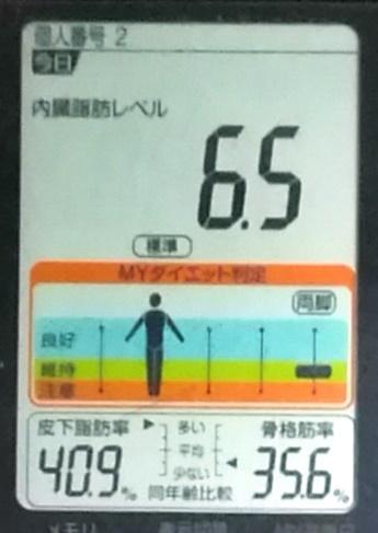 20191118体重たち (1).jpg