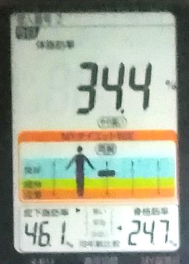 20191130体重たち (3).jpg