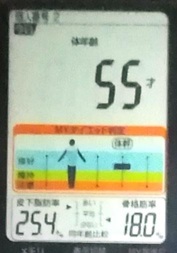 20191130体重たち (4).jpg