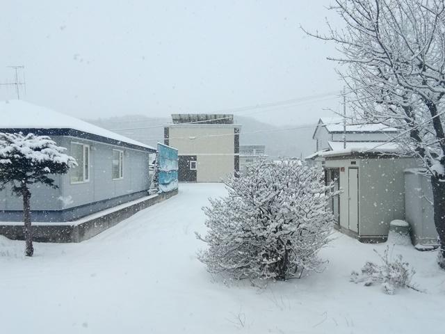 20200130雪だ (2).jpg