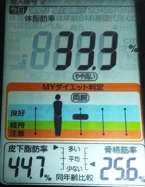 20200403体重たち (3).JPG