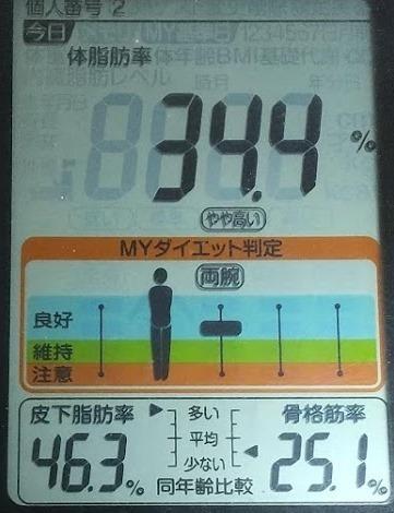 20200405体重たち (2).JPG