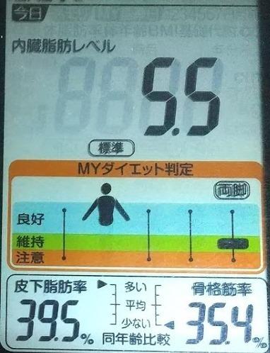 20200412体重たち (3).JPG