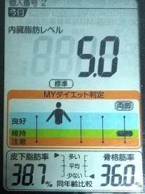 20200502体重たち (1).JPG