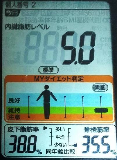 20200522体重たち (1).JPG