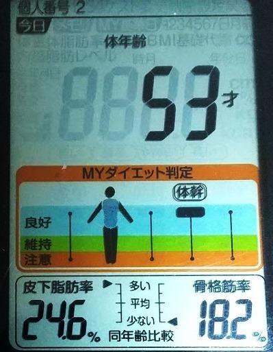 20200522体重たち (4).JPG