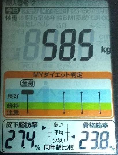 20200528体重たち (3).JPG
