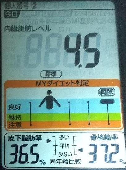 20200529体重たち (4).JPG