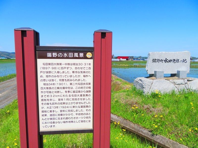 20200529端野の水田風景.JPG