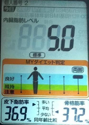 20200530体重たち (1).JPG