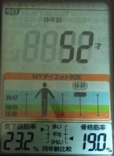 20200619体重たち (1).JPG