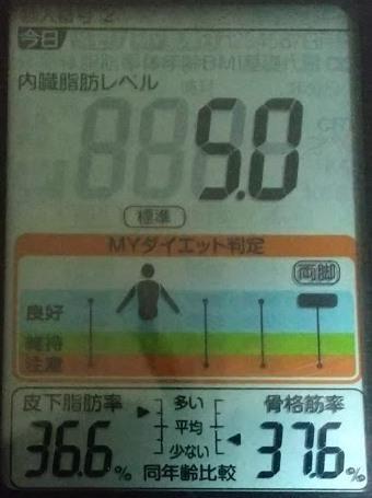 20200619体重たち (3).JPG