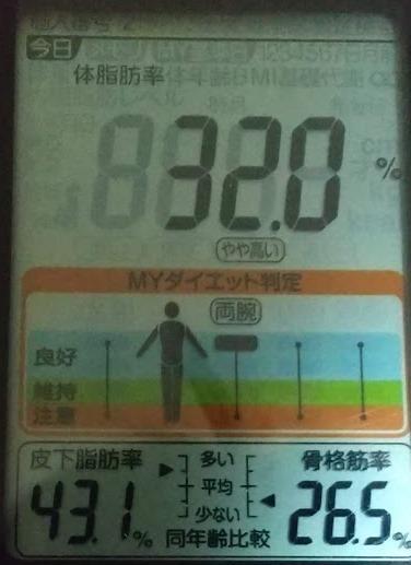 20200619体重たち (4).JPG