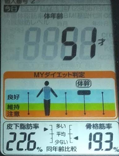 20200625体重たち (4).JPG