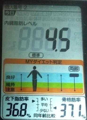 20200626体重たち (1).JPG