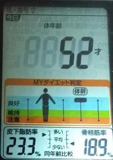 20200626体重たち (4).JPG