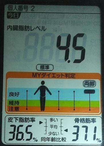 202007180530体重たち (1).JPG
