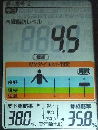 20200801体重たち (1).JPG