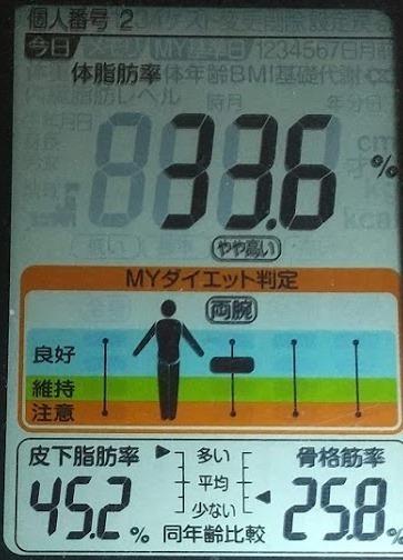 20200801体重たち (3).JPG