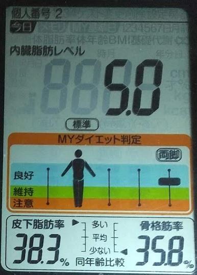 20200802体重たち (1).JPG