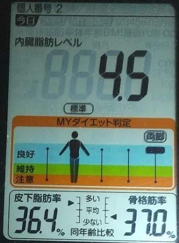 20200803体重たち (1).JPG