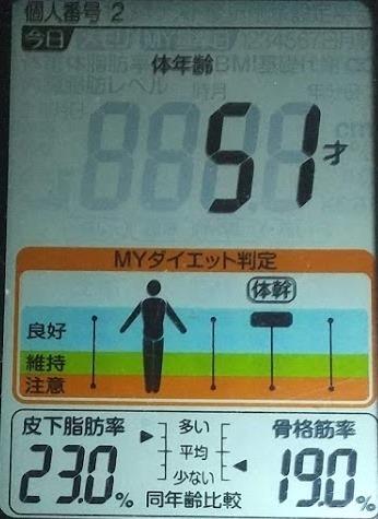 20200803体重たち (4).JPG