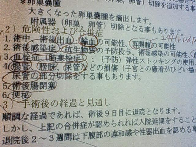 NEC_0932.JPG